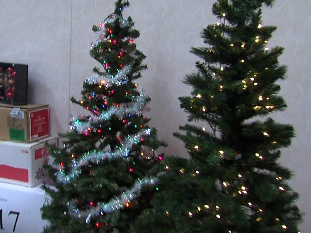 Christmas trees donated for those in need - Christmas Trees Donated For Those In Need - Kansas City News