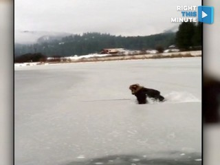 VIDEO: Ice fisher gets a cold surprise