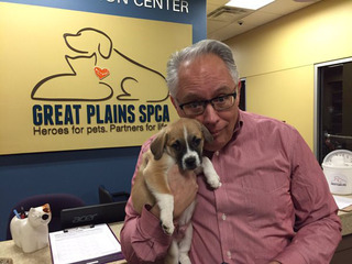 Send your Valentine a Puppy Gram this Friday