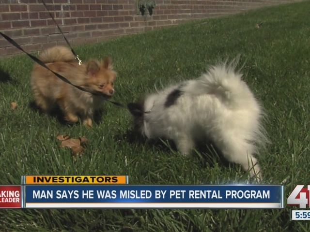 WATCH: Man upset over rent-to-own puppies deal