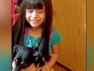 VIDEO: Dog reunited with family after 2 years