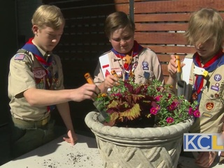 Boy Scouts Give Back To KC