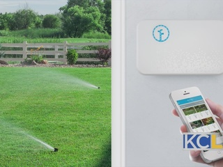 Conserving Water This Summer