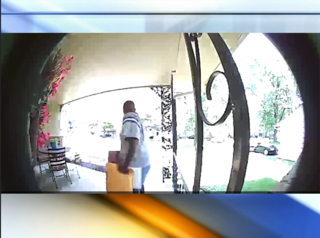 Waldo woman sees man on video stealing package