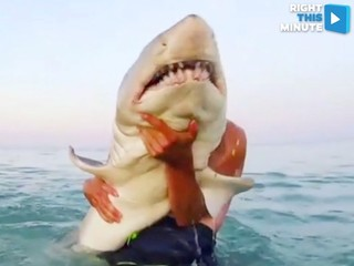 VIDEO: A fishing tale for the ages
