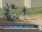 Tips from Toby: Total lawn re-do