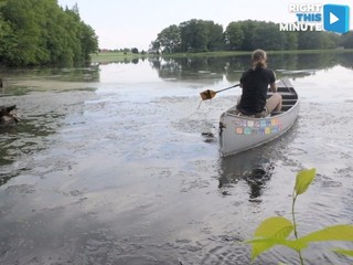 VIDEO: Man embarks on solo canoe trip to Mexico