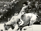 HISTORY: All about the American Royal