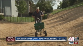 Tips from Toby: Don't wait until spring to seed