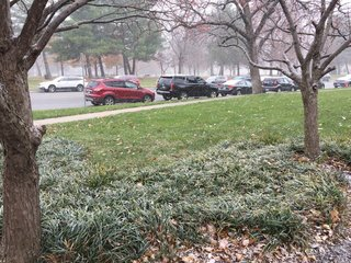 KC area captures first snow of season on camera