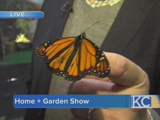 PREVIEW: Johnson County Home + Garden Show