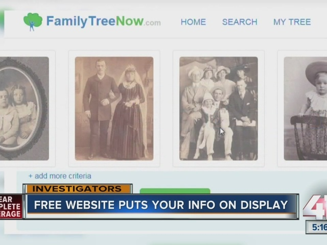 Free website puts your info on display