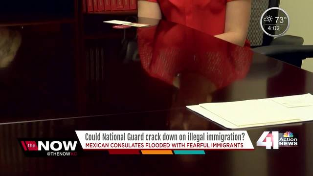 Could National Guard crack down on illegal immigration-