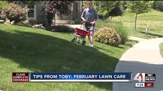 Tips from Toby: February lawn care