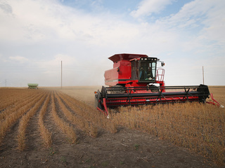 MO farm numbers fall as size of operations grows