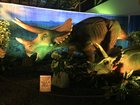 Bartle Hall hosts 'Discover the Dinosaurs'