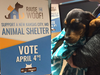 KC Pet Project hopes for larger animal shelter