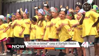 Starlight Theatre & KC Zoo partner for camp