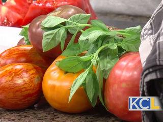 Recipes perfect for tomato season