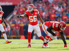 Video: Derrick Johnson's fear of birds exposed