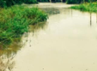 Man dies after car gets taken by rushing water