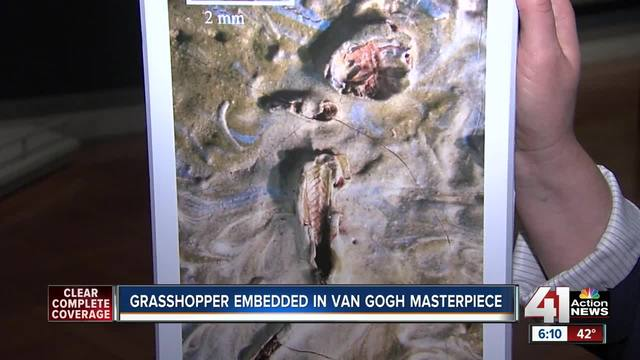 Grasshopper found embedded in van Gogh's 'Olive Trees' painting