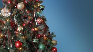 Kansas man offering free Christmas trees