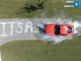 VIDEO: Burnout gender reveal