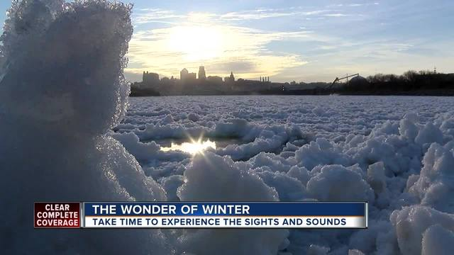 Winter in KC- Incredible beauty found in freezing temperatures