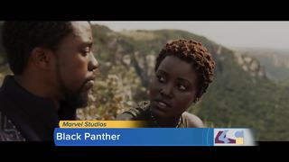 Movie Review: The Black Panther breaks molds