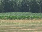 Farmers in Johnson County weary of trade war