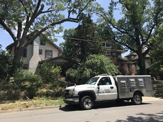 41 animals rescued from midtown KC house