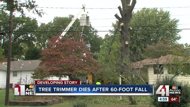 Tree trimmer killed in 60-foot fall