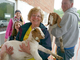 Church class donations push 'goat meter' to 500
